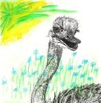 ostrich (collab with Kelly Darke)